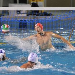 Festa Como Nuoto Oliva in Nazionale