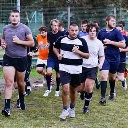Ufficiale: Rugby Como ripescato in C1