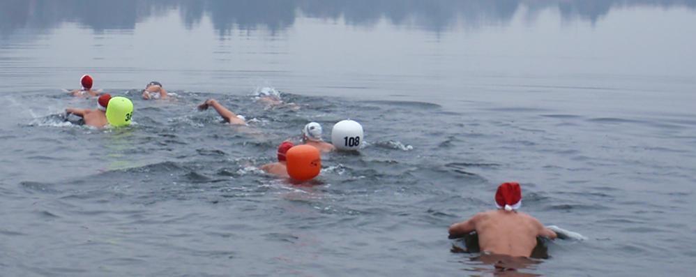 Il Segrino lancia la nuova moda   Tuffarsi nel lago in pieno inverno