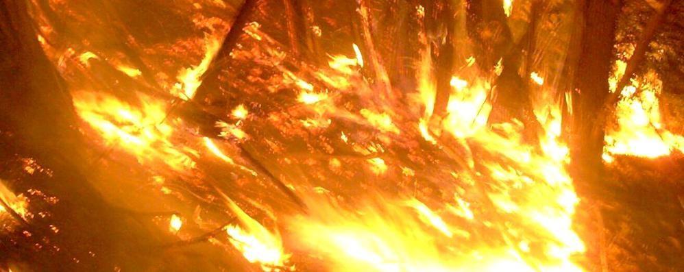 Lombardia a fuoco  Como la più colpita