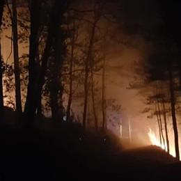 Incendio nella notte nei boschi Pompieri mobilitati a Stazzona