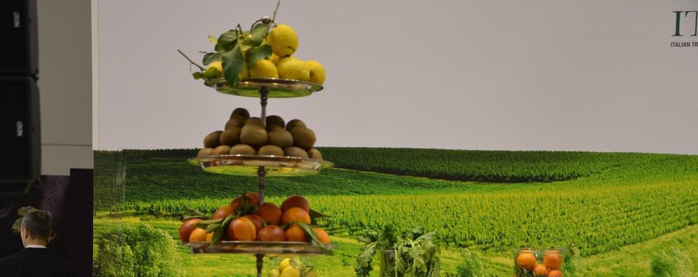 Agroalimentare: ad agosto avanzo commerciale Ue +29% su mese