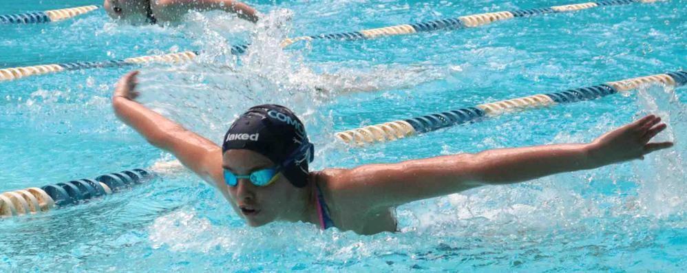 Tricolori nuoto giovanili  Comaschi a due punte