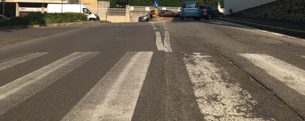 Da via Saffi fino a Parco Argenti   È allarme topi in centro a Cantù
