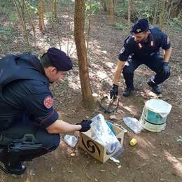 I vigili lo fermano, lui confessa l'omicidio  Donna uccisa nei boschi di Cadorago