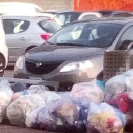 Mariano, multe per i rifiuti abbandonati   E 4 marianesi devono pagare 500 euro