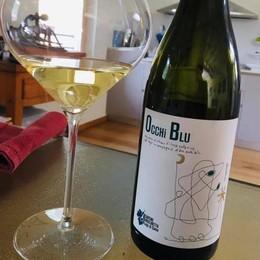 Il vino di Domaso vince  al concorso internazionale