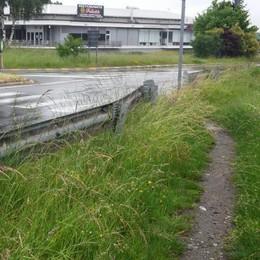 Olgiate, rischi per i pedoni  Colpa dell'erba alta