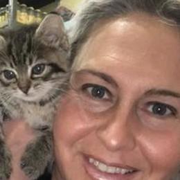 Bassa, allarme gatti abbandonati  «In lockdown tantissime adozioni   e adesso li lasciano in strada»