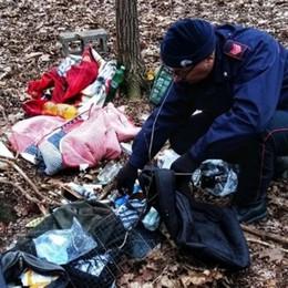 Merone, spaccio nei boschi Arrestate 4 persone