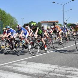 Un buongiorno al ciclismo Domani si corre ad Alzate