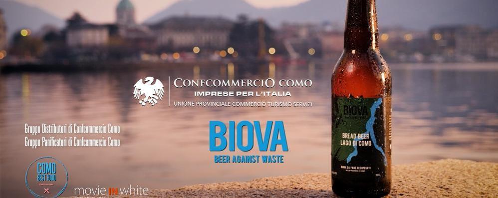 La birra del lago di Como  dal pane invenduto  E il progetto cresce