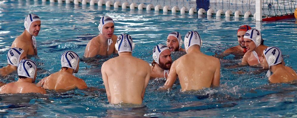 Il girone della Como Nuoto  Sette liguri e due Bologna
